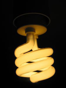 Simple saving energy techniques like changing light bulbs will save your bills as well as your carbon emissions.